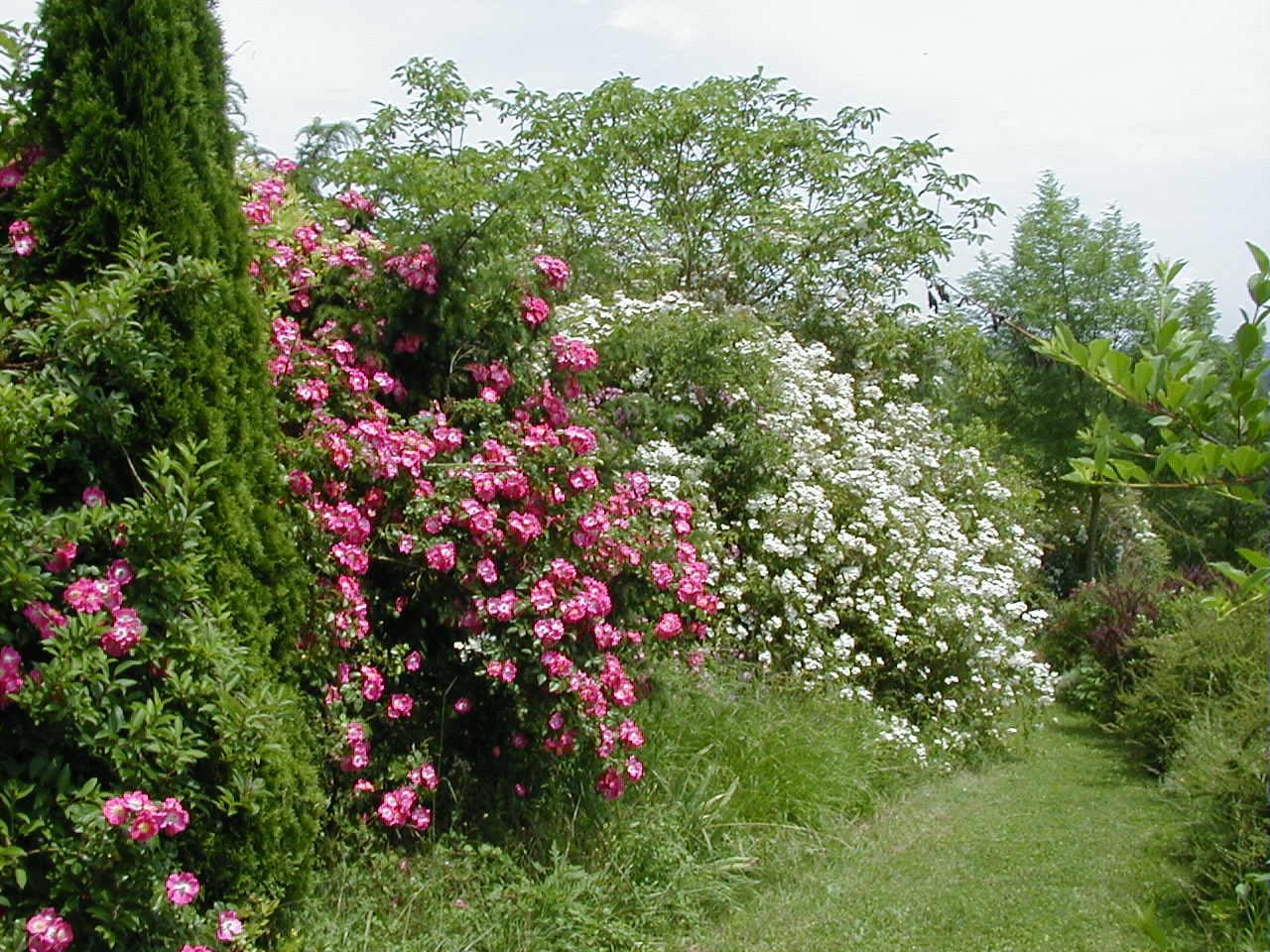 Jardin Du Domaine De La Raze